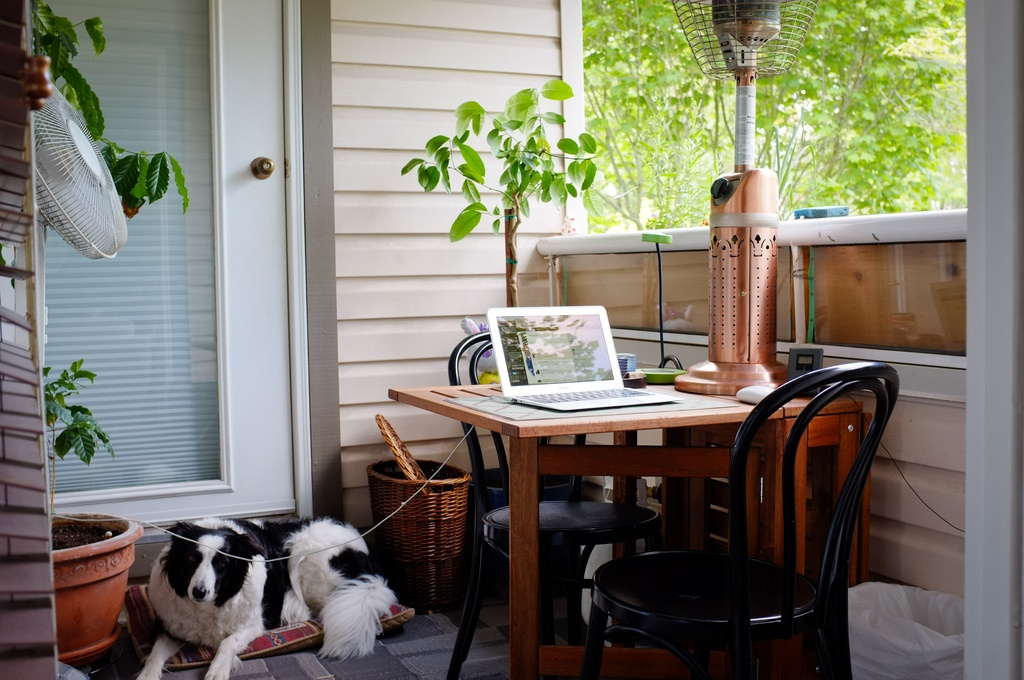 7-tips to work from home successfully